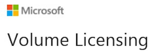 Microsoft® VisualStudio® Professional 2019 Sngl OLP 1License